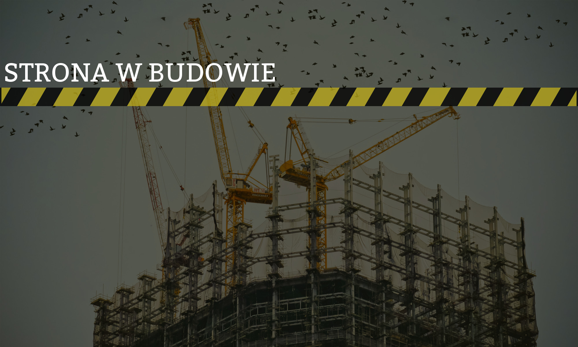 Buk.pl
